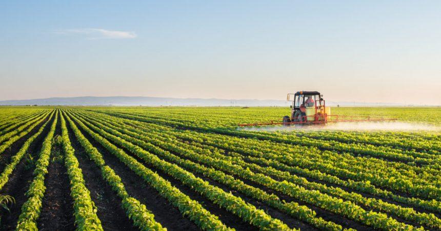 Evolução da agricultura e suas técnicas