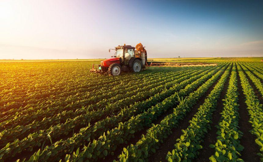 ESTUDO APONTA QUE AGRONEGÓCIO BRASILEIRO ALIMENTA MAIS DE 772 MILHÕES DE PESSOAS NO MUNDO