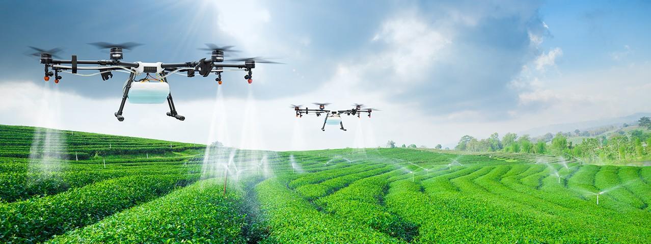 Drones já são utilizados na aplicação de produtos